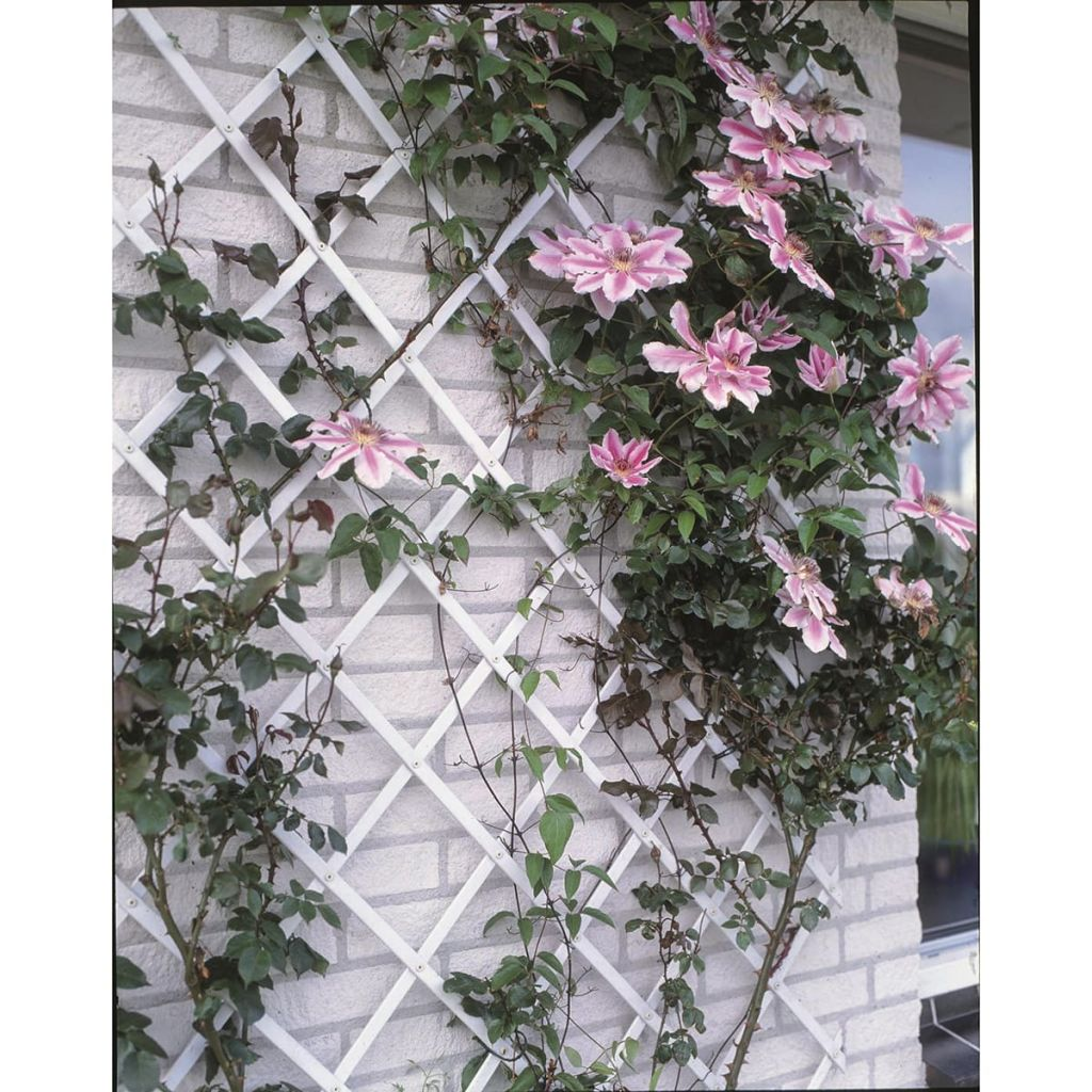 Nature Trädgårdsspaljé 50x150 cm PVC vit 6040701