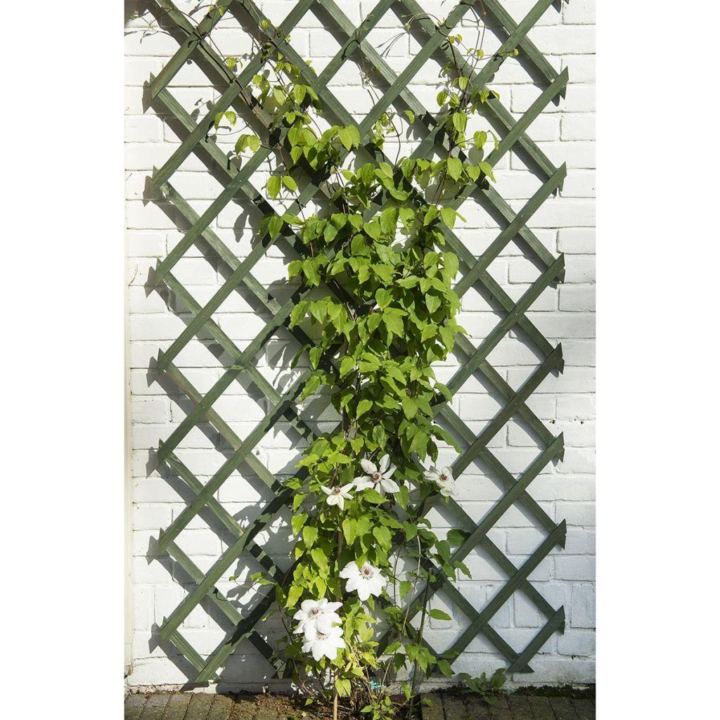 Nature Trädgårdsspaljé 50x150 cm trä grön