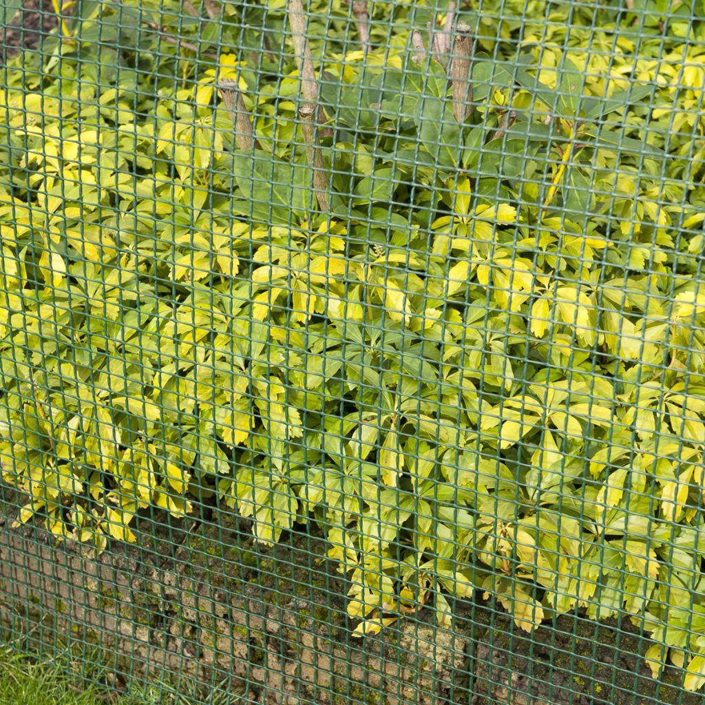 Nature Staketväv fyrkantig mesh 5x5 mm 1x3 m grön