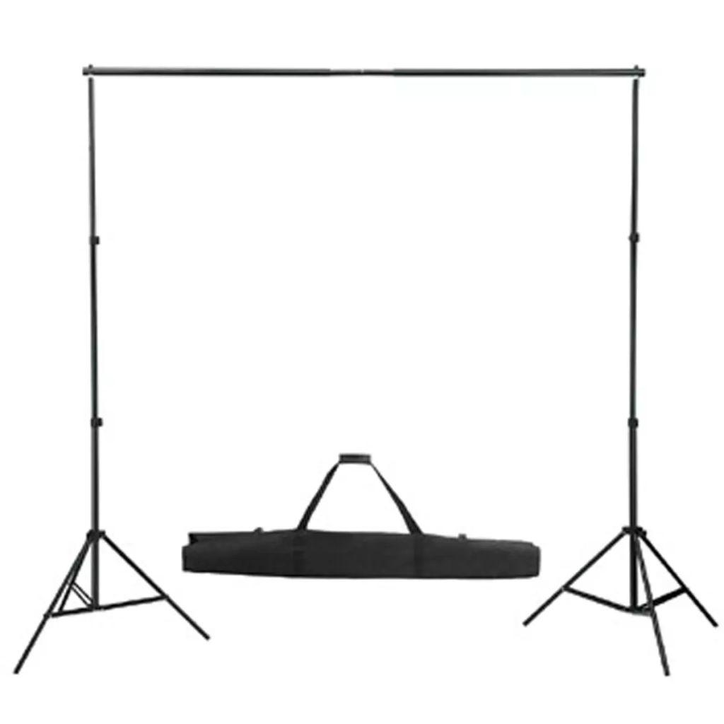 vidaXL Stativ och fotobakgrund 300 x 300 cm grön