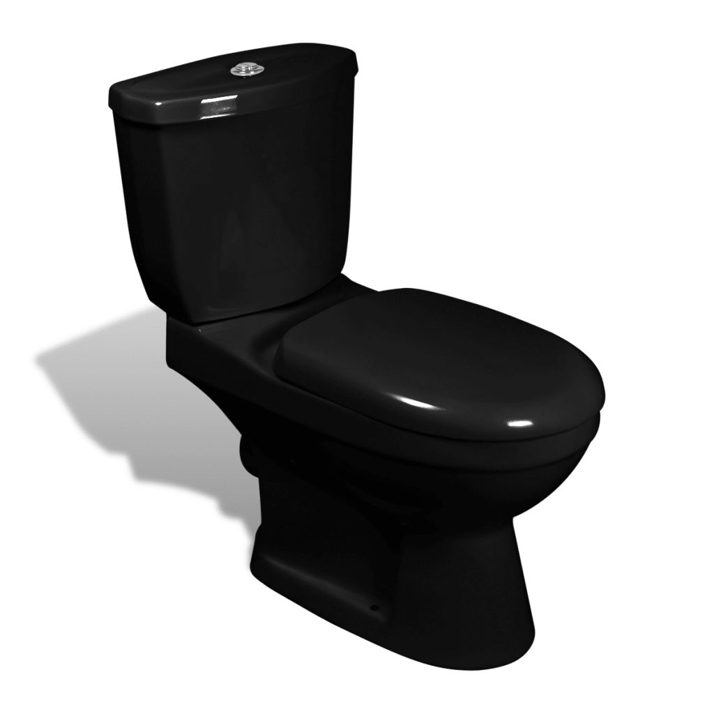 vidaXL Toalettstol med cistern svart