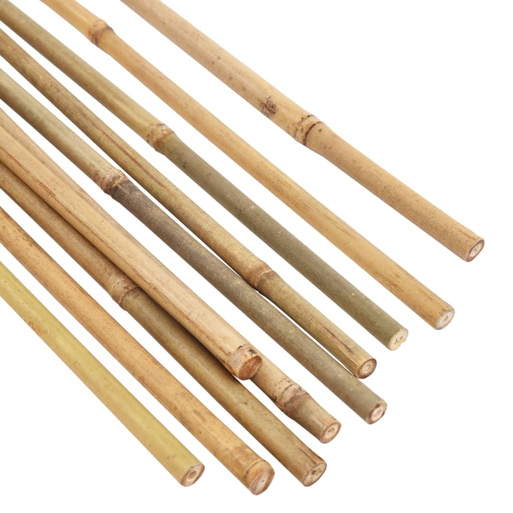 Bambupinnar 50 st 170 cm